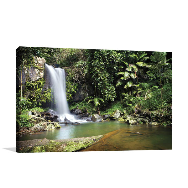 Curtis Falls Gold Coast Wall Art