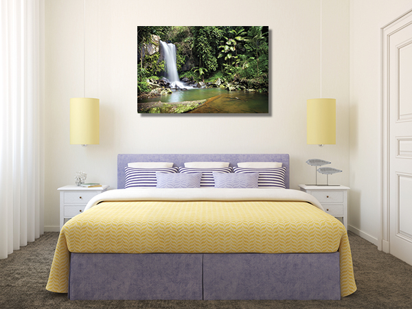 Curtis Falls Gold Coast Canvas Prints