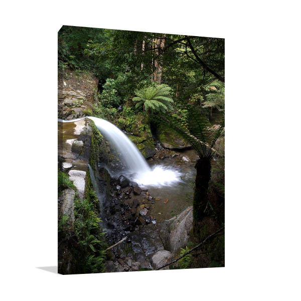 Deloraine Art Print Of Tasmania Cascades Canvas Prints