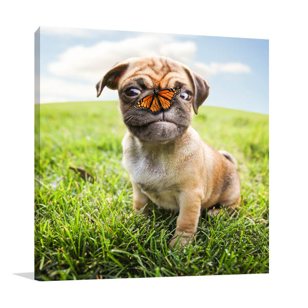 Dog and Butterfly Art Prints