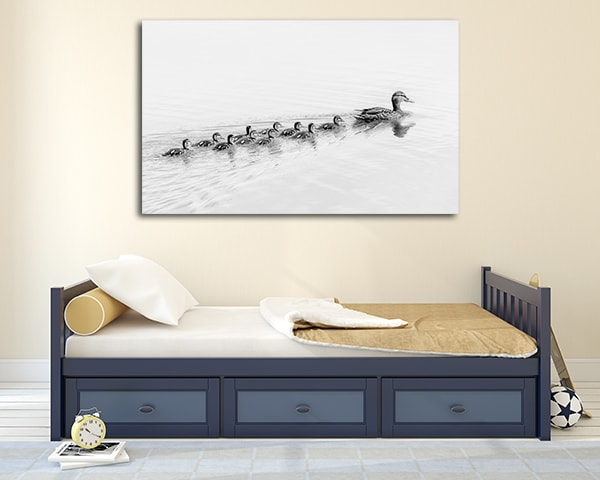 Ducks Follow Me Prints Canvas