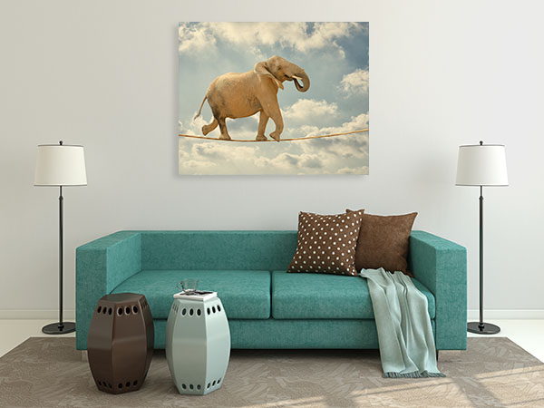 Elephant Walking On Rope Canvas Prints