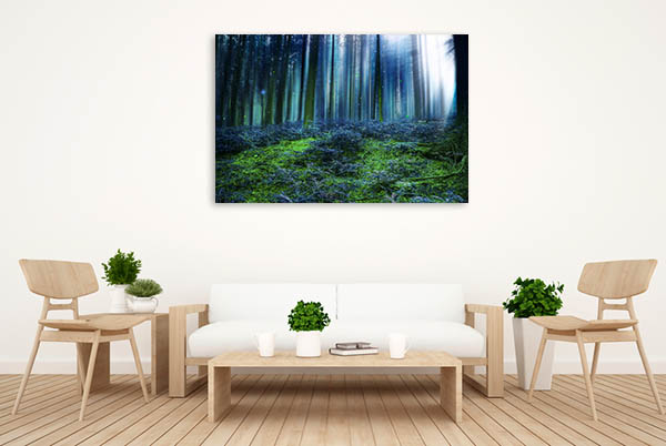 Fairytale Forest Canvas Art