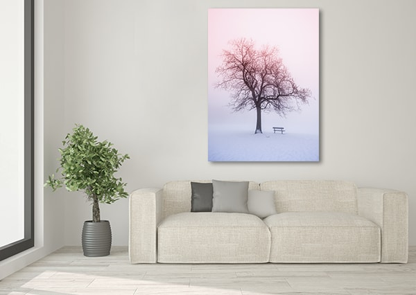 Foggy Winter Canvas Art Print