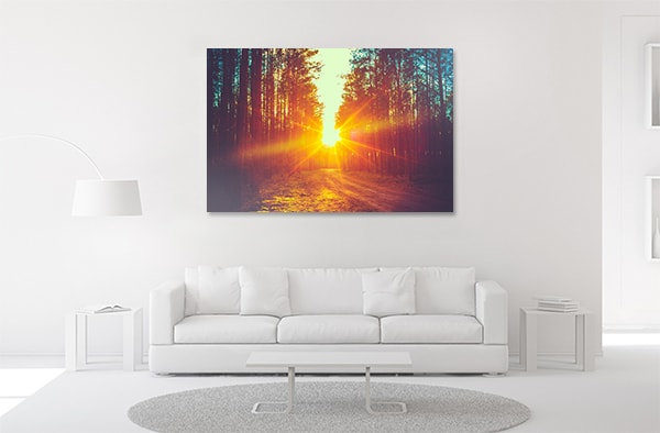 Forest Road Canvas Art Prints