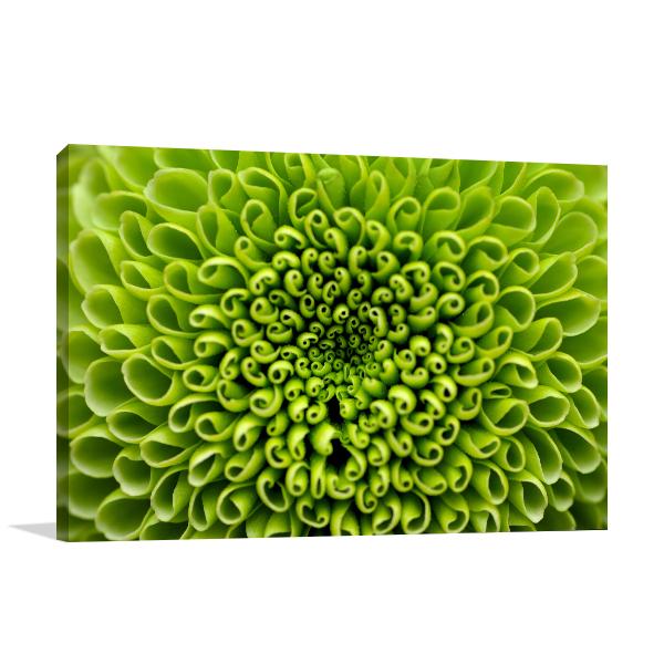 Green Flower Canvas Prints