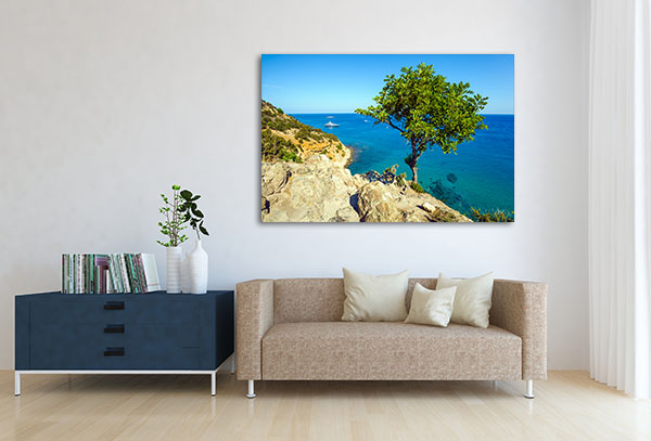 Hanging Tree Canvas Prints