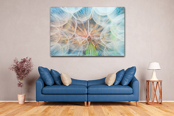 Inside Dandelion Wall Art Print. Inside Dandelion Print Artwork Inside  Dandelion Artwork