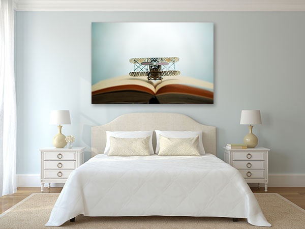 Jet and Book Wall Art