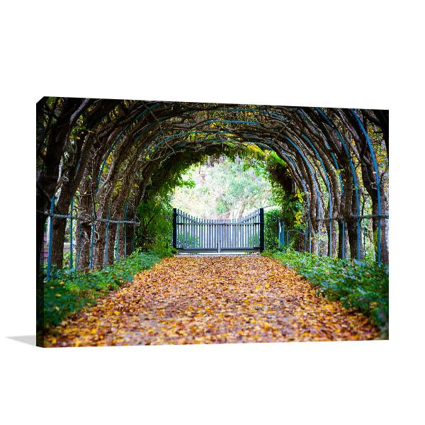 Jindabyne Art Print Forest Path Wall Art