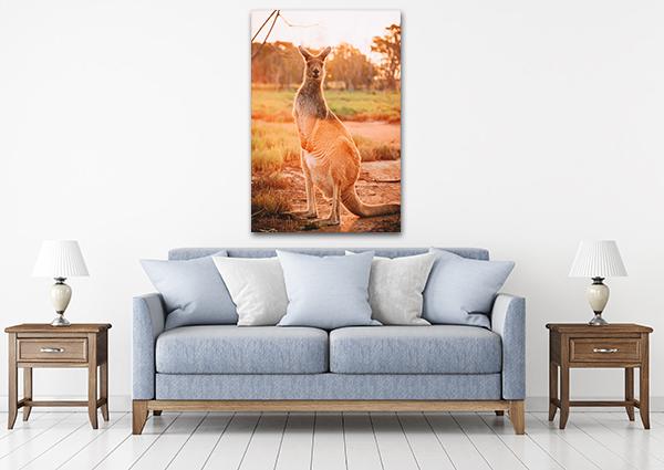 Kangaroo Canvas Art Print on the wall