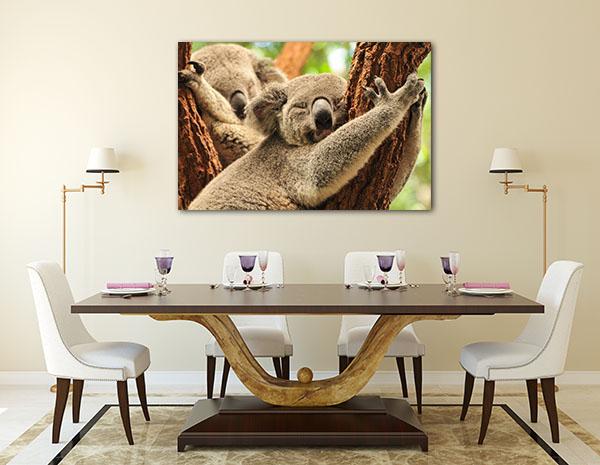 Koalas At Brisbane Canvas Art