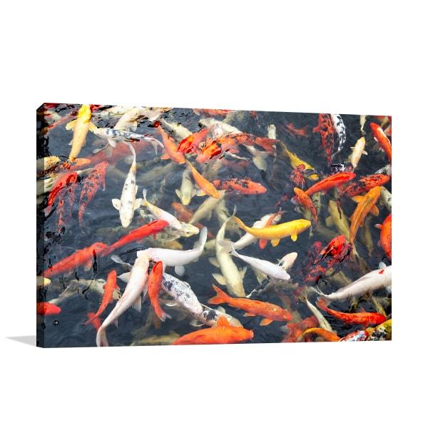 Koi Pond Canvas Art Print Prints Canvas