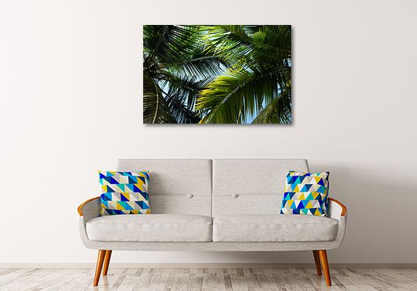 Palm Leafs Canvas Prints