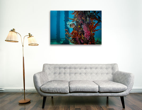Perth Art Print Busselton Jetty Globe Fish Wall Art Photo Print