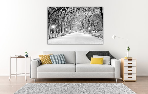 Snowy Central Park Prints Canvas