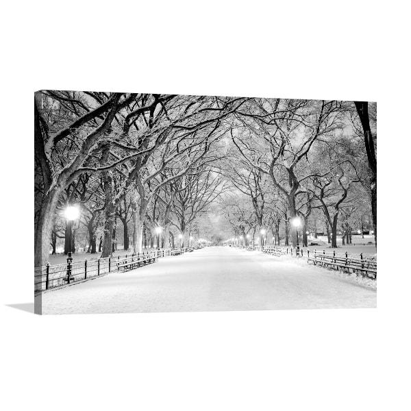 Snowy Central Park Art Prints