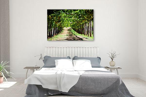 Swan Valley Perth Art Print Vineyards Wall Art