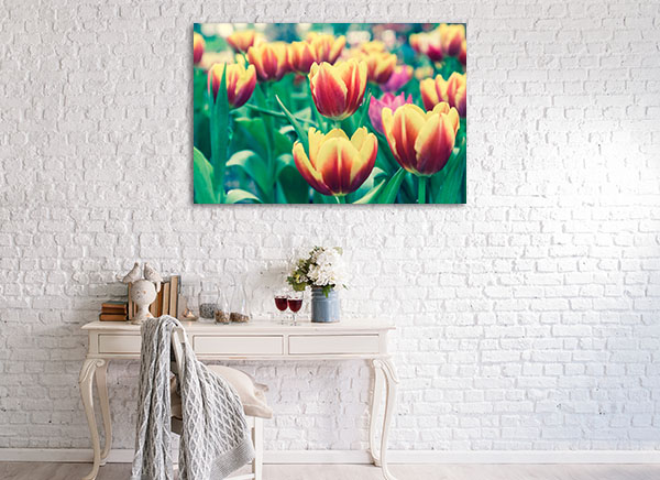 Tulip Flower Garden Art Prints