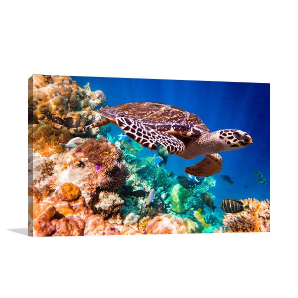 Turtle Under Water Canvas Art