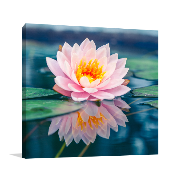 Water Lily Wall Art