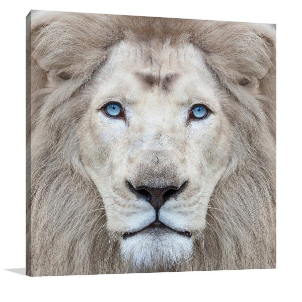 White Lion Wall Art