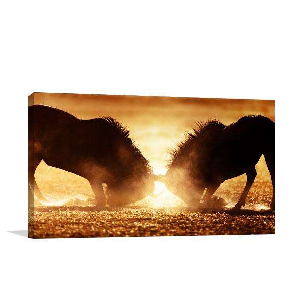 Wildebeest Dual Canvas Art Prints