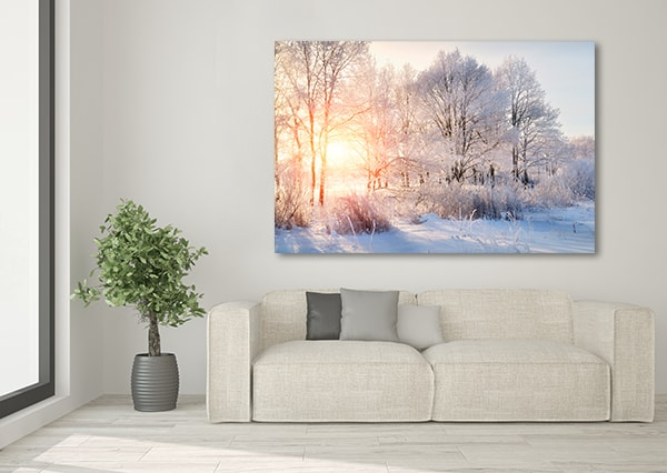 Winter Trees Canvas Prints on the Wall