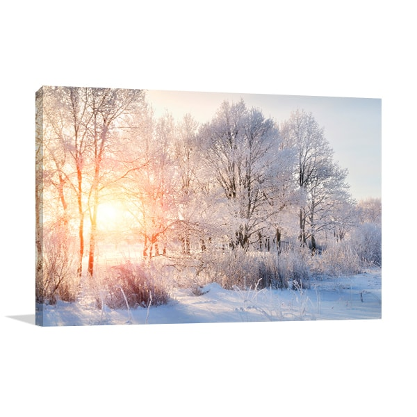 Winter Trees Canvas Prints