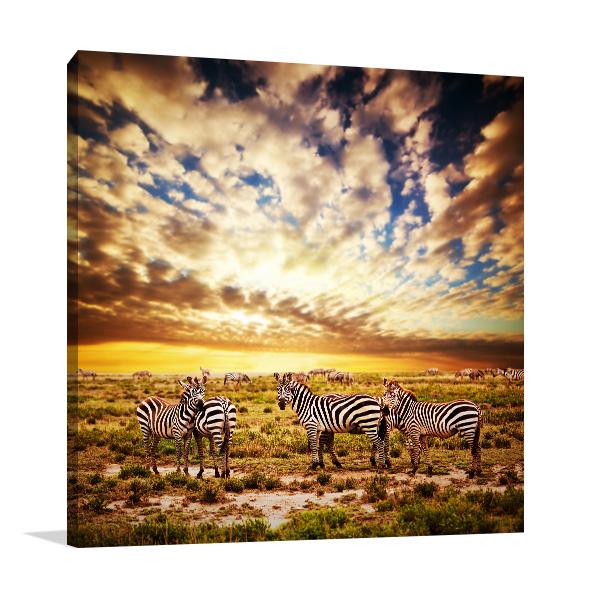 Zebras Herd Prints Canvas