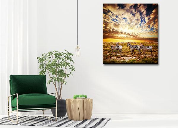 Zebras Herd Canvas Prints
